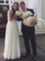 Goldedoodle puppy with her happily married parents on their big day!