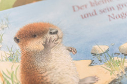 bücherstube_portrait-17.jpg
