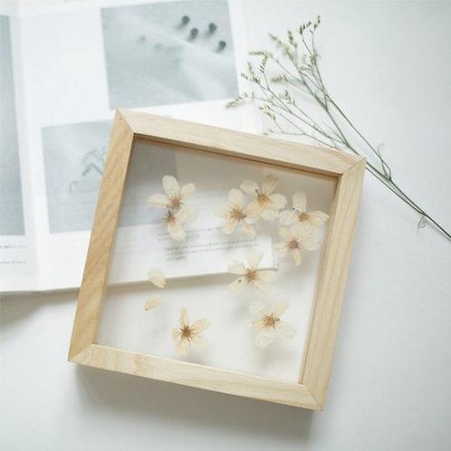 Botanica - kwiaty i rośliny za szkłem