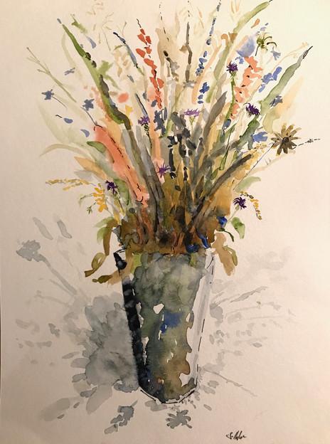 Mountain Wildflowers, Northfield Pickings
