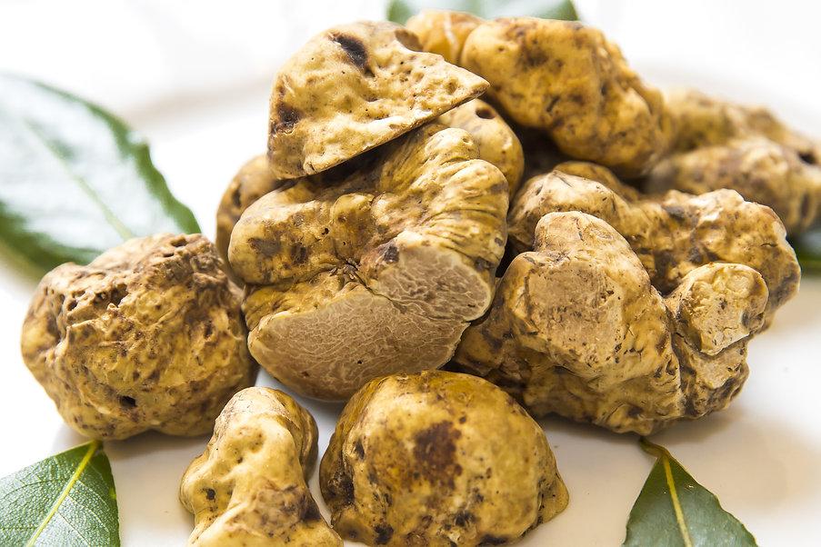 group of white truffles.jpg
