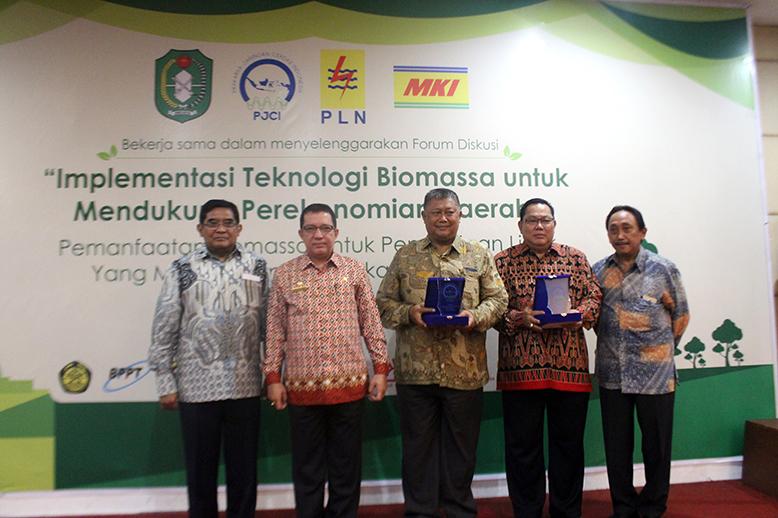 PJCI_Biomassa_p