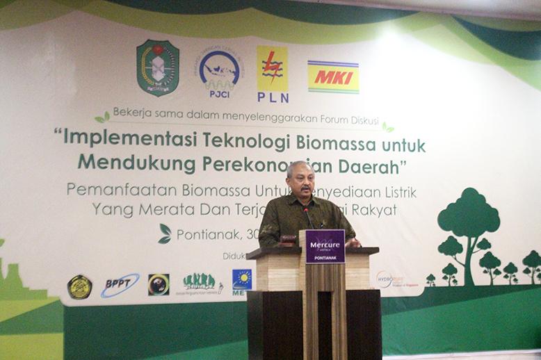 PJCI_Biomassa_a
