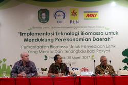 PJCI_Biomassa_at
