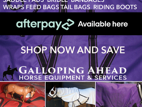 Winter WITH GALLOPING AHEAD HORSE EQUIPMENT & SERVICES.