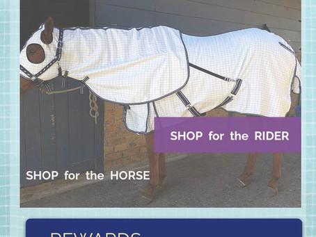Shop Horse Gear at Galloping Ahead pick up or post.