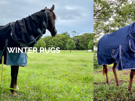 Ready for Winter Get Rugs