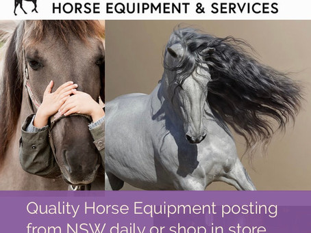 Winter warming   Join us and shop Horse