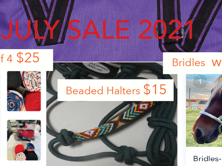 Tack up and go horse gear SALE