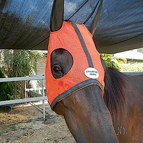 mask-orange.png