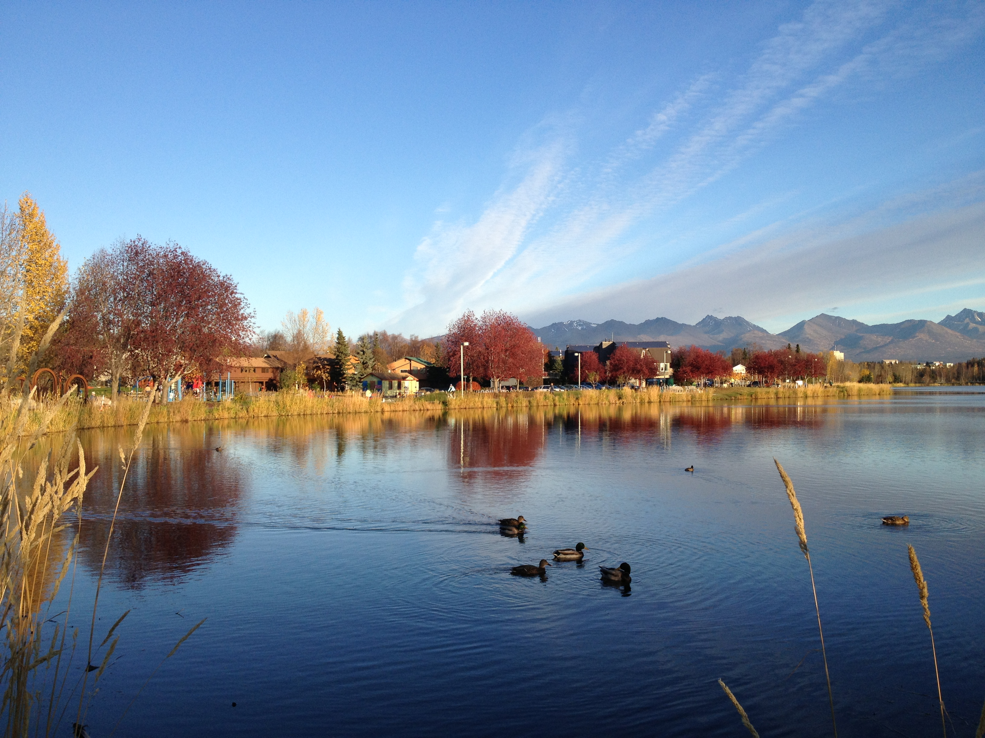 Westchester Lagoon in fall