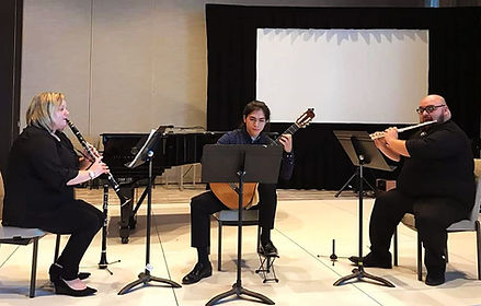 trio minerva website.jpg