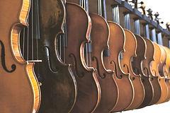 Line of violins