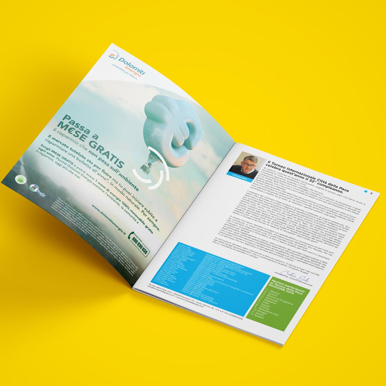 tdp brochure 2
