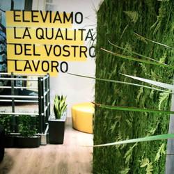 #tbt #work #allestimento #design #green