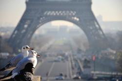 Paris【France】