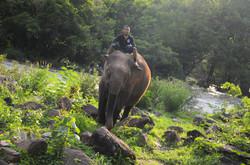 Tadlo【Laos】