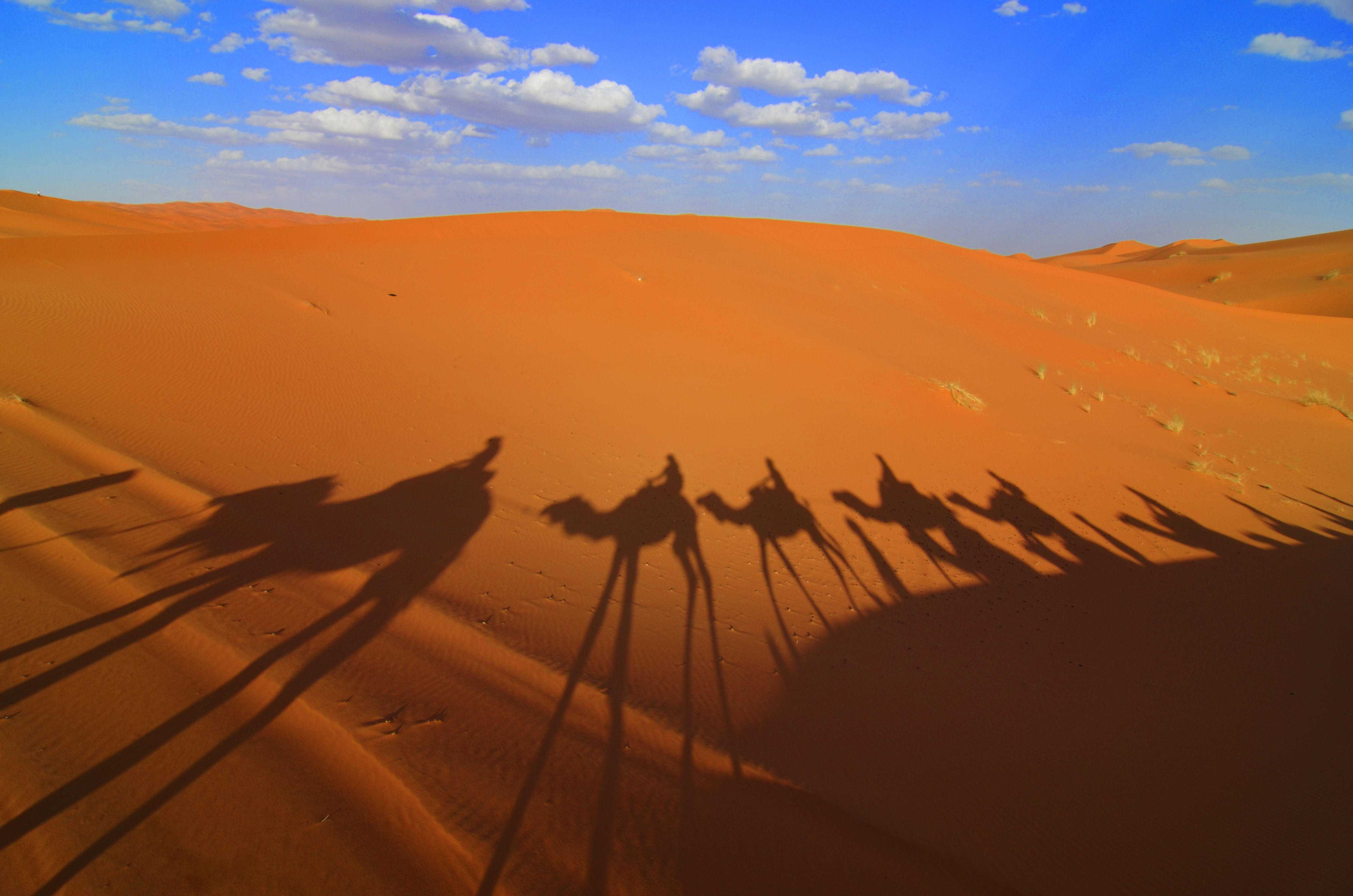 Sahara Desert【Morocco】