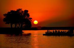 Chobe【Botswana】