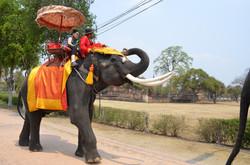 Ayutthaya【Thailand】