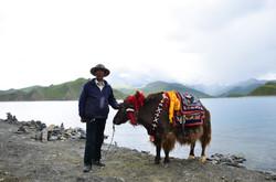 Yam Dok Lake【China】