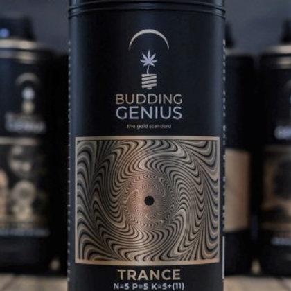 Budding Genius Trance