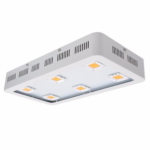 China LED COB light