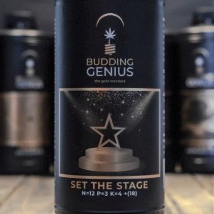 Budding Genius Set The Stage