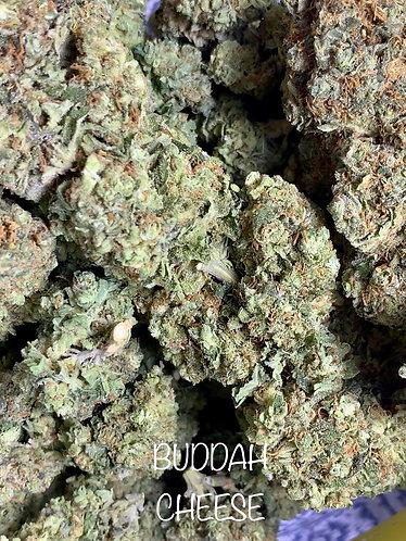 BIG BUDDAH CHEESE