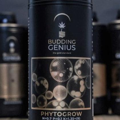 Budding Genius Phyto Grow
