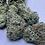 Thumbnail: SUPER BLUE CHEESE