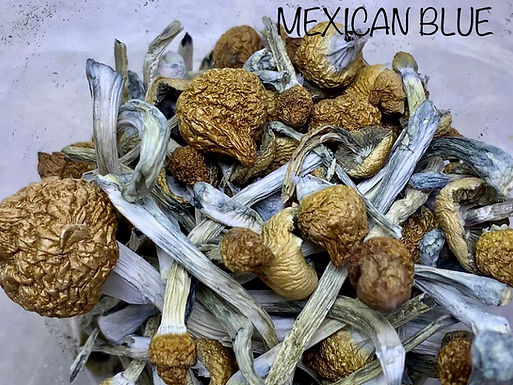 MEXICAN BLUES
