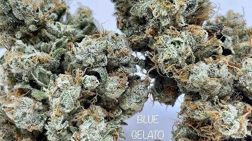 BLUE GELAT0 #41