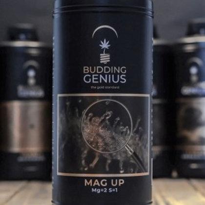 Budding Genius Mag Up
