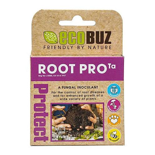 Ecobuz Root Pro