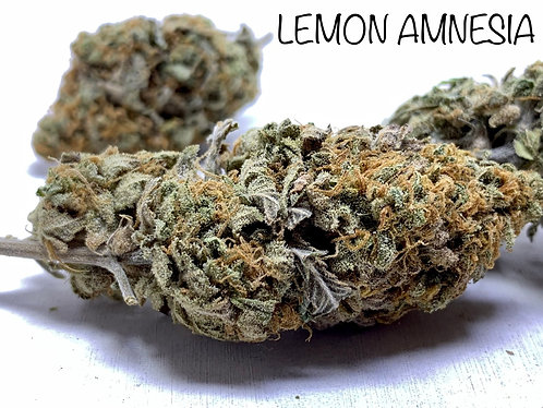 LEMON AMNESIA HAZE