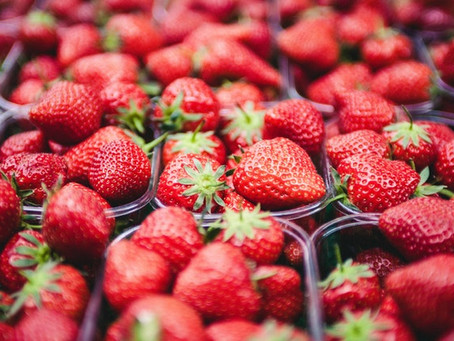 Bilpin fruit farmers branch out thanks to million dollar government recovery grants