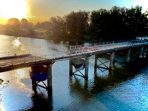 Hawkesbury City councillor charged and to face court over bridge protest