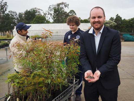 $45,000 grant to Hawkesbury Community Nursery to help bushfire recovery