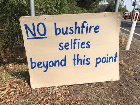 Art of Recovery Roadshow seeks to bring together locals' experiences of the Black Summer Bushfires