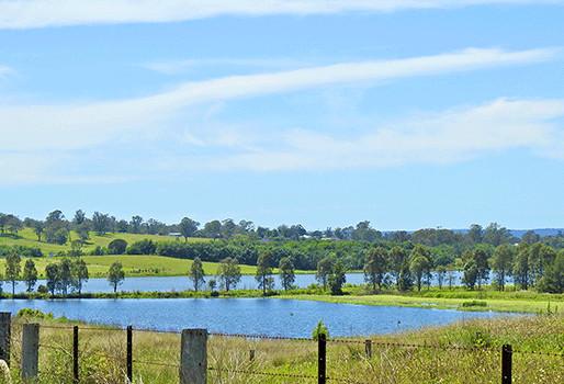NRAR prosecutes Hawkesbury market garden for taking water from Bushells Lagoon