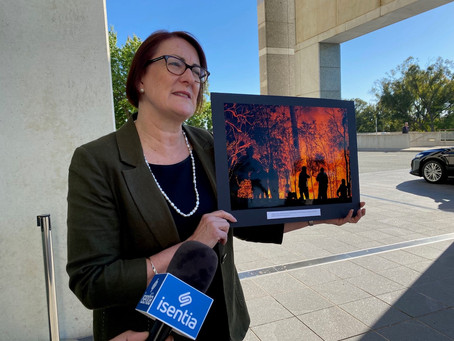 Bushfire claims so involved professional grant writers being used - Templeman calls for action