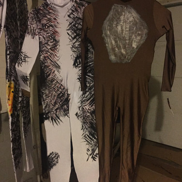 Handpainted Costumes - Cats the Musical - Milburn Stone Theare