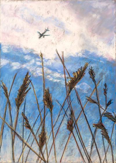 Meadowlands 2