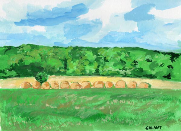 painting website hay bales.jpg