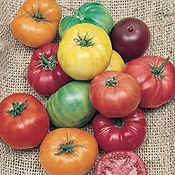 Tomato-Heirloom-Rainbow-Blend.jpg