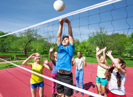 Family Volleyball Options