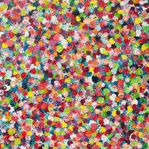 Blossom 120x120