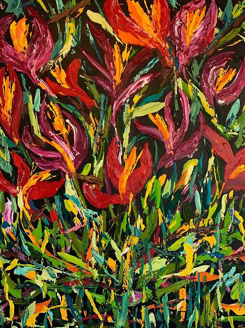 Tropicana 180x150