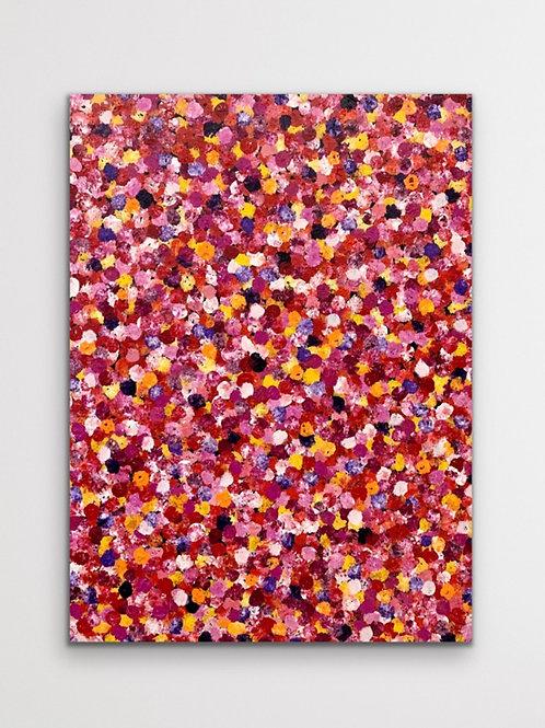 Blossom 120x160